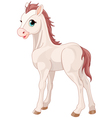 Horse foal vector image