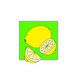 lemon on green field art vector image vector image