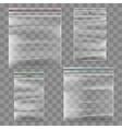Plastic zipper bag template vector image vector image