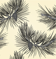Seamless texture Pine branch and pine cone as vint vector image vector image