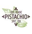 100 percent organic pistachio nut with shell half