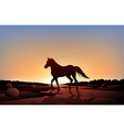 A horse in a sunset scenery at the desert vector image