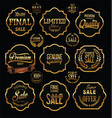 golden premium quality and guarantee labels vector image vector image