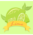 Lime Fruit Banner vector image