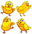 Little chick looking happy vector image