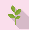matcha plant icon flat style vector image vector image