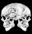 Two faced skull vector | Price: 1 Credit (USD $1)