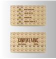 visit card template vector image vector image