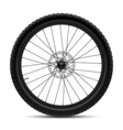 Bicycle wheel vector image vector image