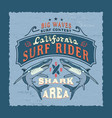 big waves california vector image