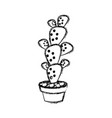 cactus in pot draw vector image