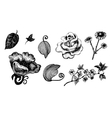 Collection of hand drawn ink flowers and leaves vector image