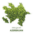 green leaf map of azerbaijan of a vector image vector image
