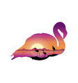 scene with silhouette flamingo at sunset vector image vector image