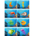 Scenes with sea animals under the sea vector image vector image
