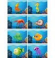 Scenes with sea animals under the sea vector image