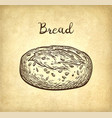 whole grain bread vector image