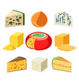 cheese types and slices vector image