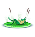 a gorged frog resting on a leaf water lily vector image vector image
