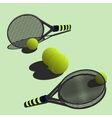 big tennis vector image vector image