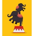 elephants acrobats festival funfair vector image vector image