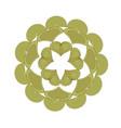 green floral mandala pattern decoration vector image vector image