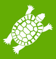 turtle icon green vector image vector image