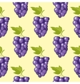 bunch grapes seamless background vector image vector image