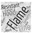 Flame Resistant Hood text background wordcloud vector image vector image