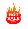 hot sale modern banner with offer details vector image
