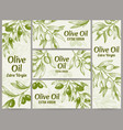 olive oil banner organic oils labels green olive vector image