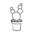 cactus plant draw vector image