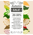 Very high quality original autumn sale booklet or vector image