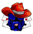 bulldog head hat poker ace vector image