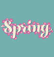 calligraphic lettering spring with pink tiny vector image