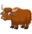 cartoon happy yak vector image vector image
