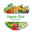 farm vegetable frame with organic food vector image vector image