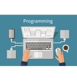 Programming and coding website deveopment web vector image vector image