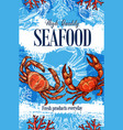 seafood crab ocean food products store sketch vector image vector image