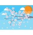 sakura japan cherry branch vector image