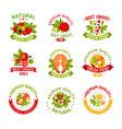 premium quality food logo templates set natural vector image
