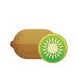 kiwi fruit on white background in flat style vector image