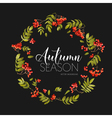 autumn rowan berry background floral banner design vector image