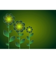 Decorative flowers on a dark background vector image vector image