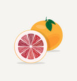 grapefruit flat icon vector image vector image