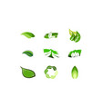 set green leaf logo designs inspiration isolated vector image