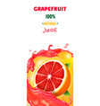 citrus grapefruit vertical banner design packaging vector image vector image