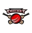 Cricket sports ball and bat vector image vector image