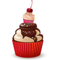 Cupcakes with cherry and chocolate vector image vector image