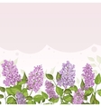 Floral card with lilacs on lilac background vector image vector image